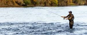 Your Go To Location for Fishing Information!